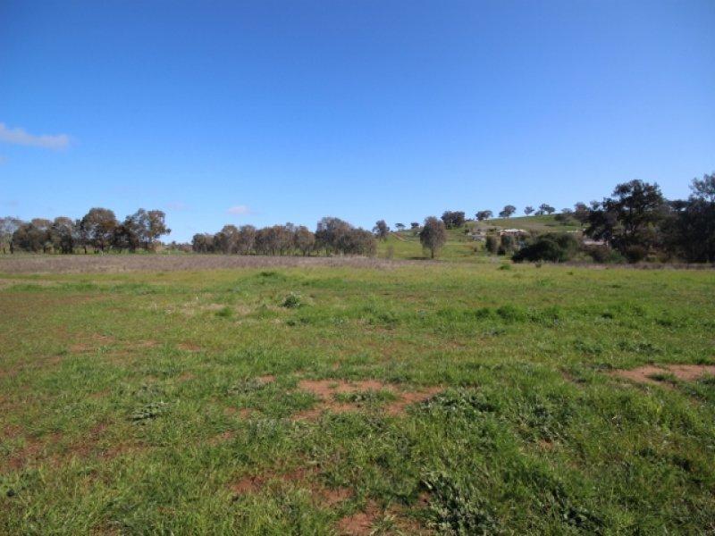 53 Currawang Drive, Springvale, NSW 2650