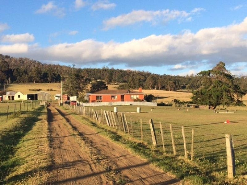 652 Cutting Grass Road, Levendale, Tas 7120