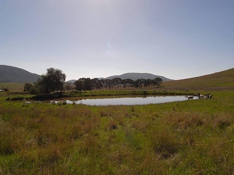 1349 Sandy Creek Road, McCullys Gap, NSW 2333