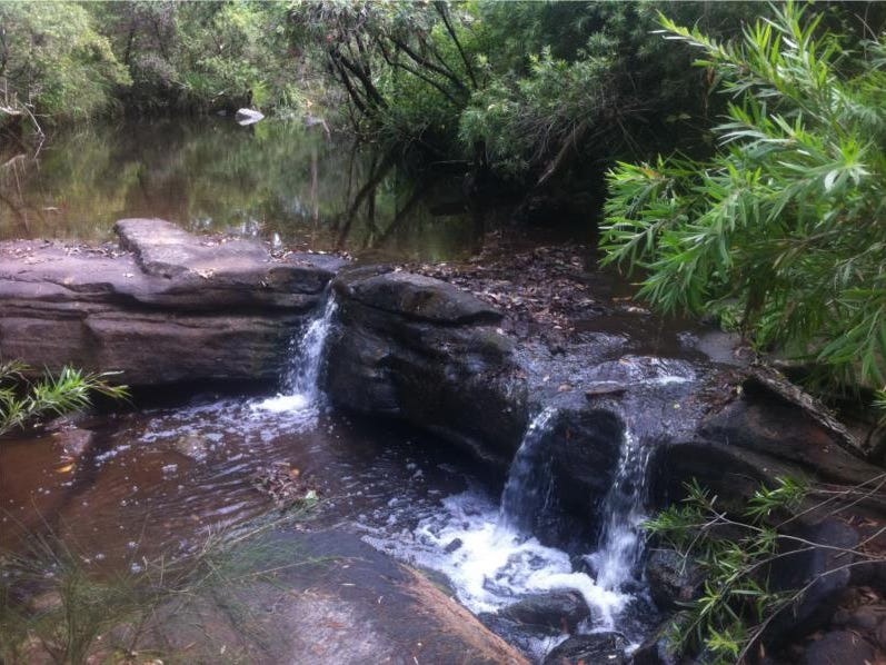 656 Yabbra Road, Yabbra, NSW 2469