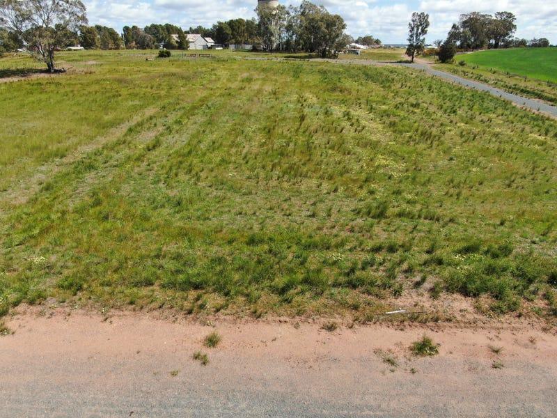 29 Creek Street,, Mirrool, NSW 2665