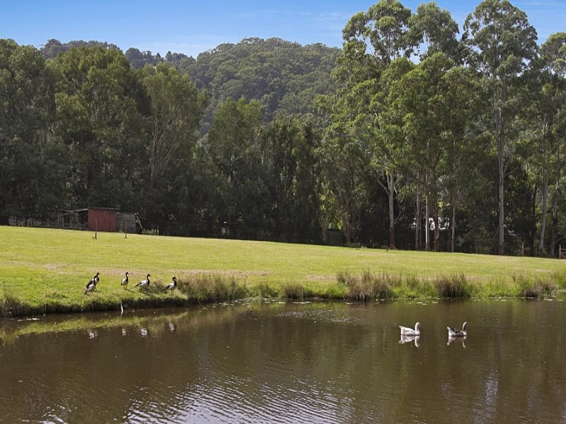 24  Green Valley Way, Piggabeen, NSW 2486
