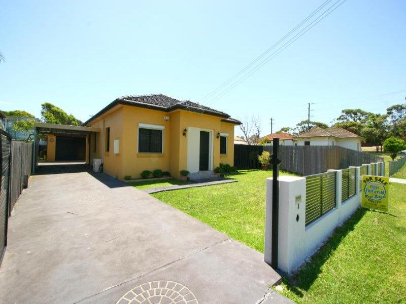 3 Hoskins Ave, Kemblawarra, NSW 2505
