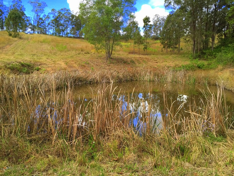 Lot 1 Burridge Road, Kybong, Qld 4570