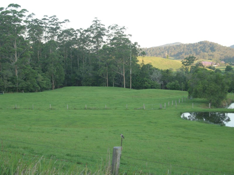 86 Butts Creek Rd, Taylors Arm, NSW 2447