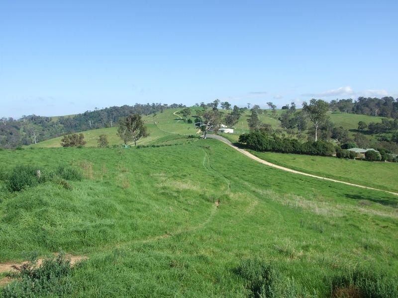 612 Peak Hill Road, Buckajo, NSW 2550