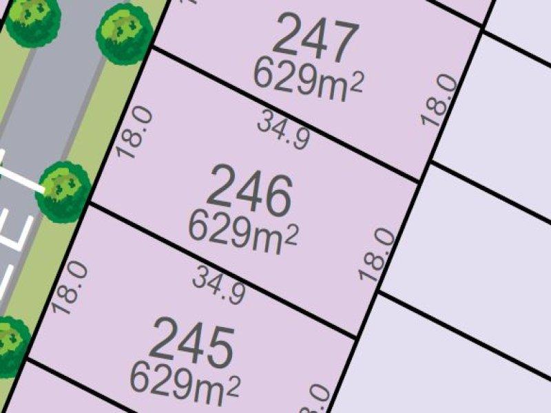 Lot 246, Vine St, Chisholm, NSW 2322