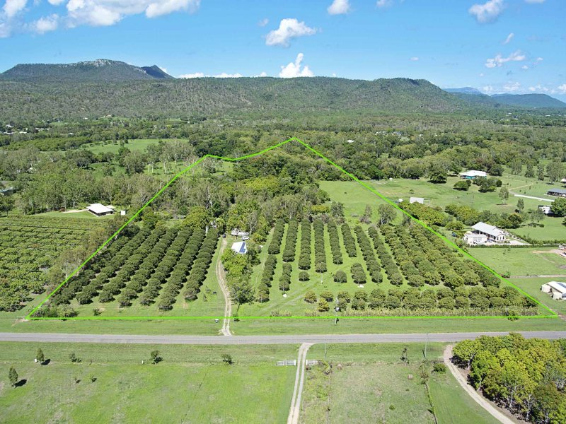 174 Williams Road, Alligator Creek, Qld 4816
