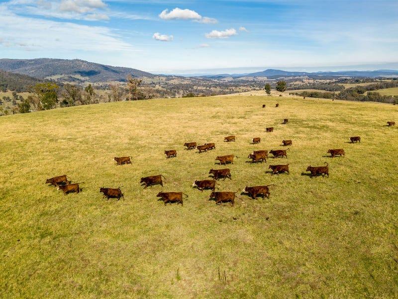 Sunny View & Christmas Hill, Tumbarumba, NSW 2653