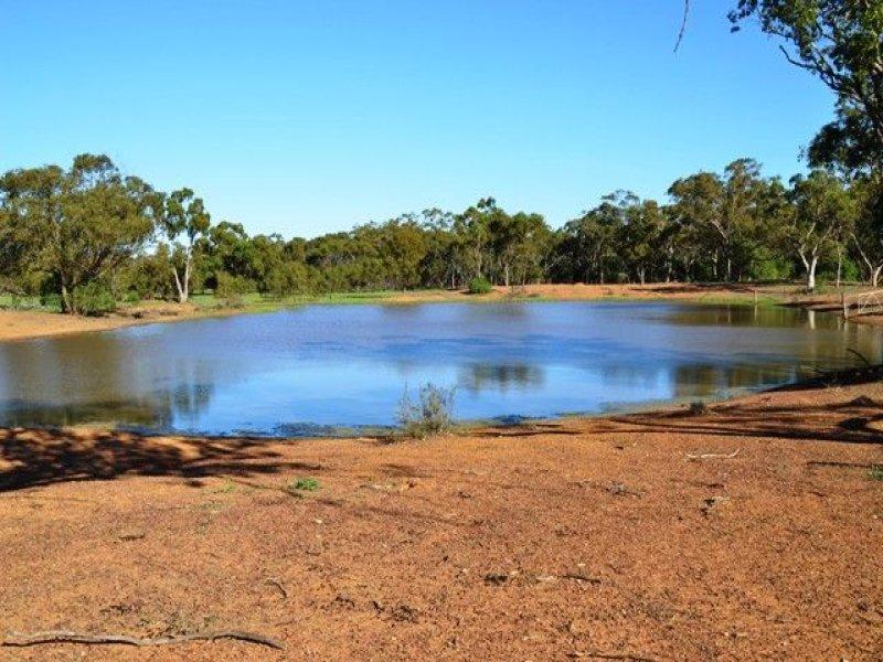 * Box Vale, Cobar, NSW 2835
