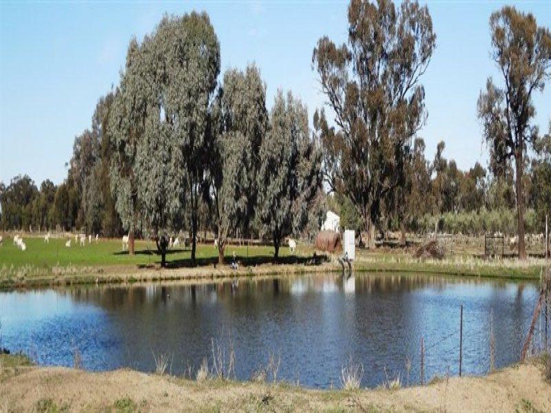 . Gulgrove, Deniliquin, NSW 2710