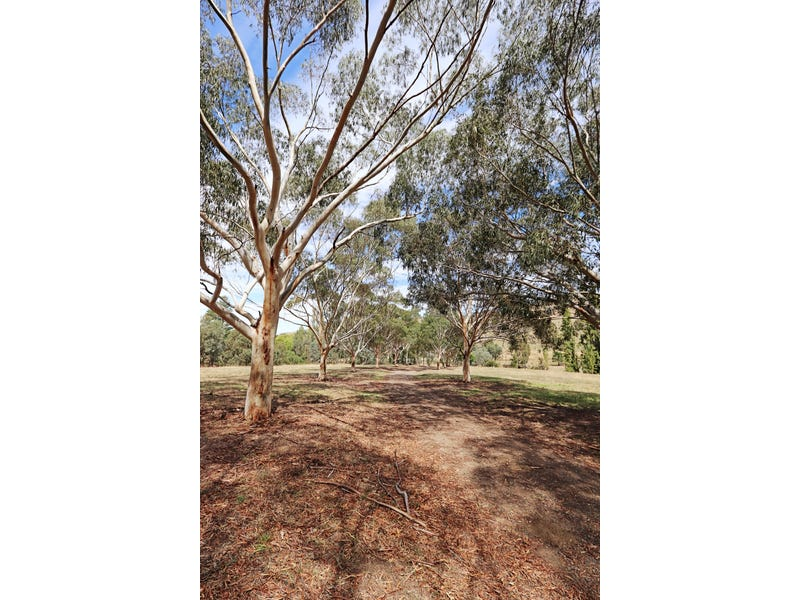 1223 Munderoo-Ournie Road, Tumbarumba, NSW 2653