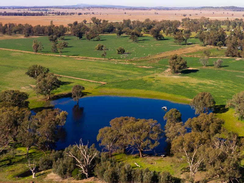 'Kywong', 5978 Newell Highway, Forbes, NSW 2871