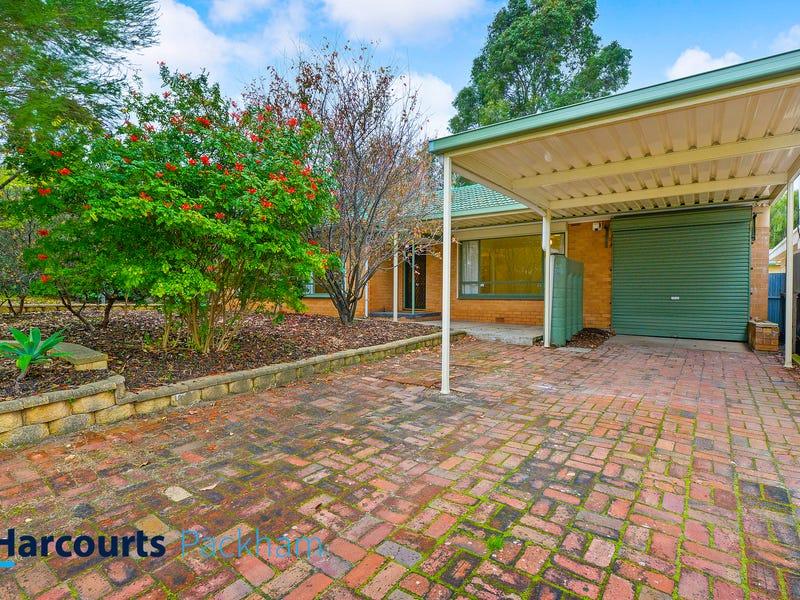 15 Aboyne Street, Banksia Park, SA 5091