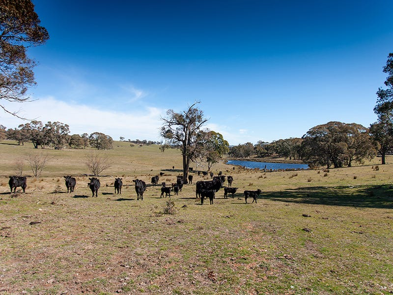 Redground Road, Crookwell, NSW 2583