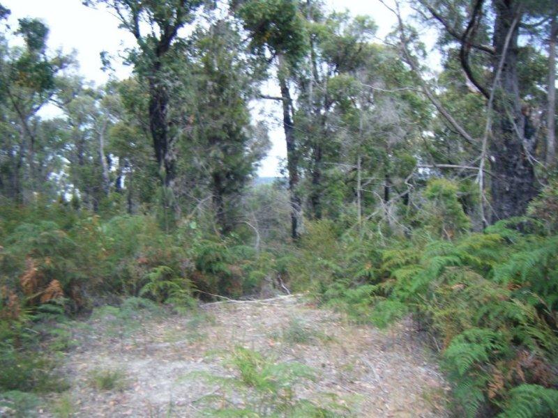 299 Badger Head Road, Badger Head, Tas 7270