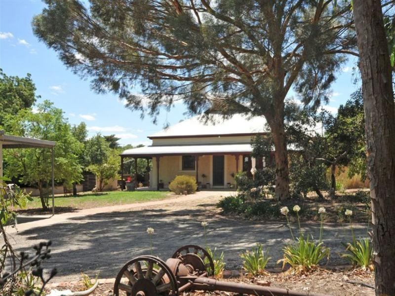 Lot 173 Light Pass Road, Tanunda, SA 5352