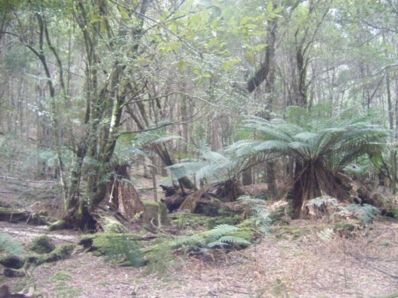 Croles Road, Trowutta, Tas 7330