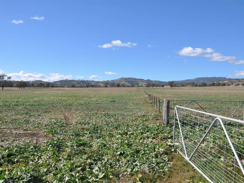 763 Warrah Creek Rd, 'Springfield', Willow Tree, NSW 2339
