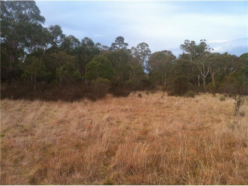Lot 6 Wallaces Gap Road, Majors Creek, NSW 2622