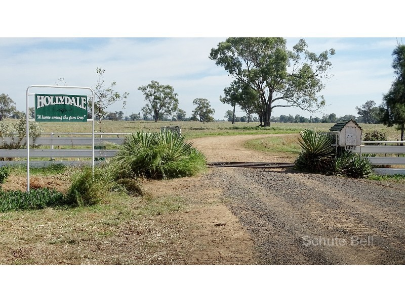 . Hollydale, Trangie, NSW 2823