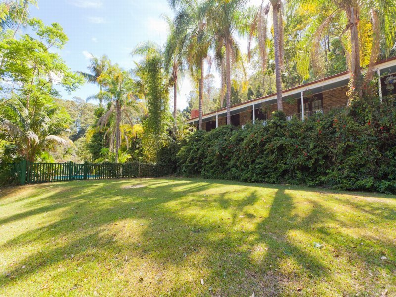 553 Upper Orara Road, Upper Orara, NSW 2450