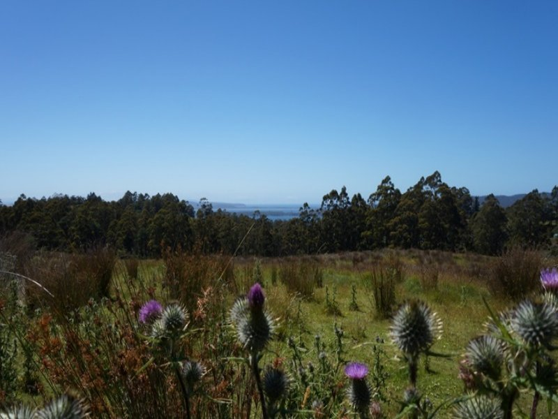 Dulcia Road, Gordon, Tas 7150