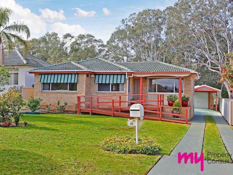 17 Wilson Crescent, Narellan, NSW 2567