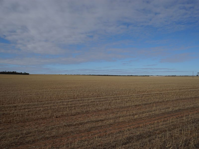 1726 Baandee North Cross Road, North Baandee, WA 6412