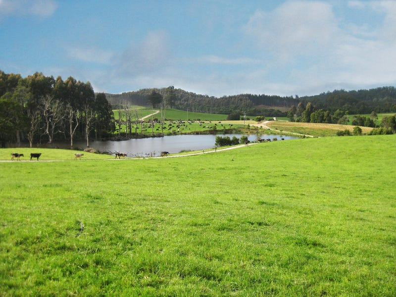 Address available on request, Mawbanna, Tas 7321
