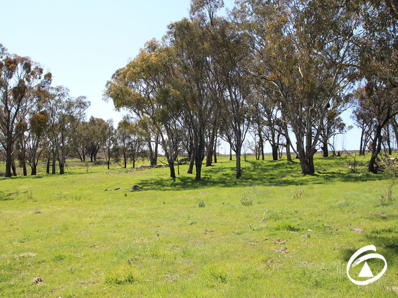 Lot 5 158  Bradley Road, Borenore, NSW 2800