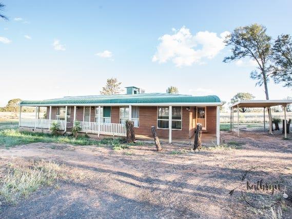 2246 Newell Highway, Biddon, NSW 2827