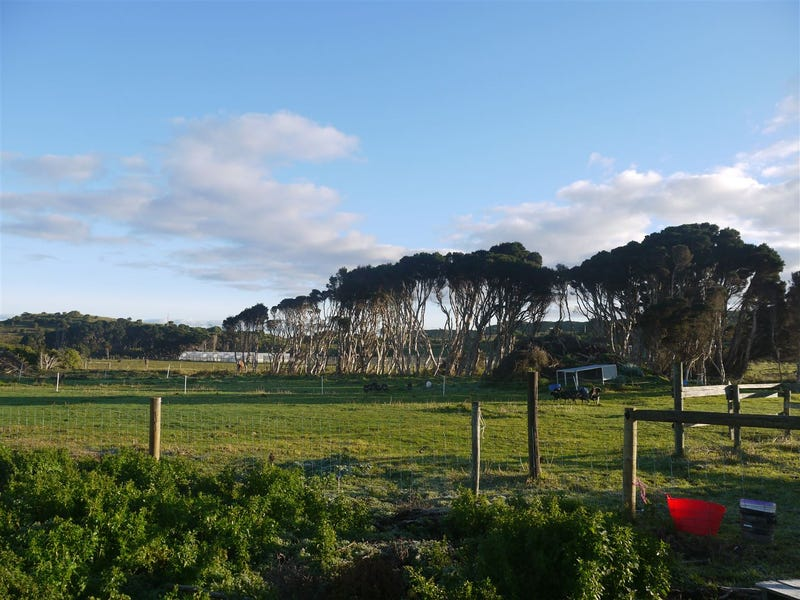 Lot 1 Stephenson Street, Currie, Tas 7256