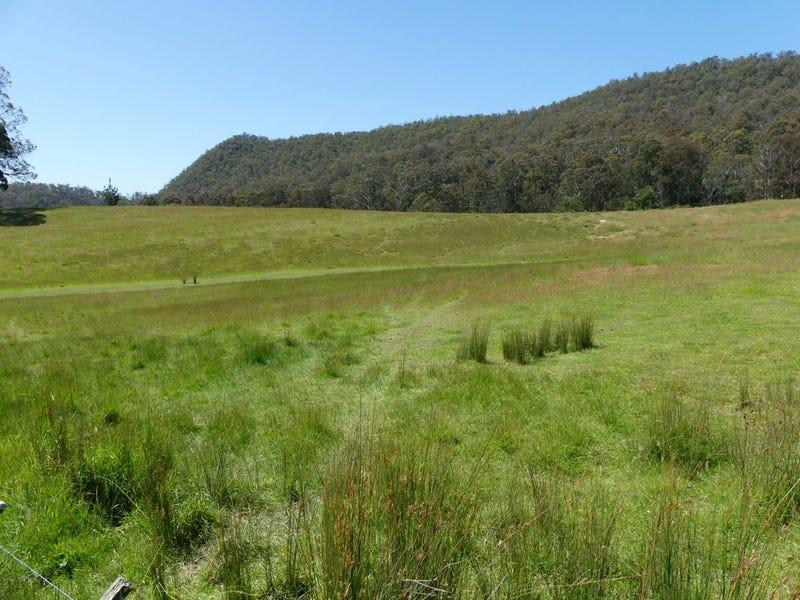 L1 Mole Creek Road, Needles, Tas 7304