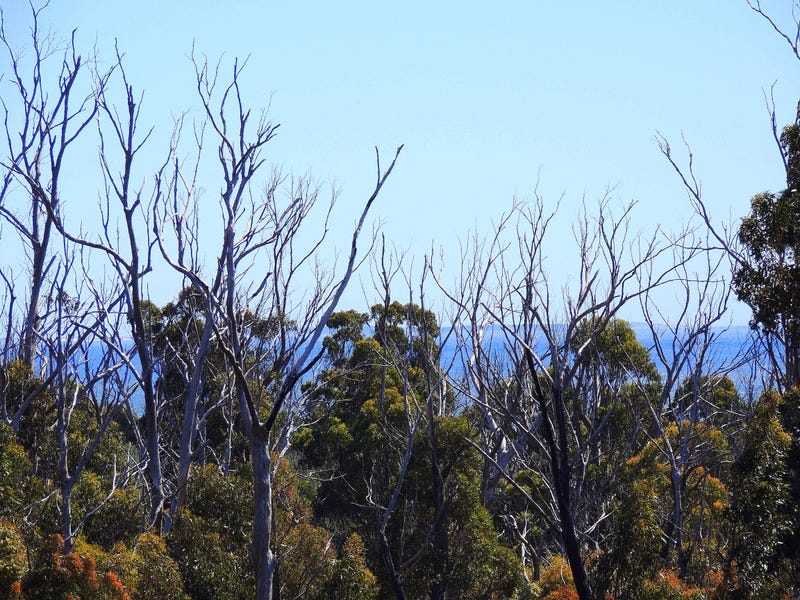 . Banticks Road, Four Mile Creek, Tas 7215