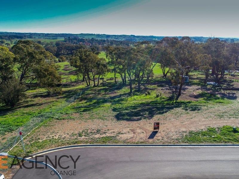 17 Hutchinson Close, Orange, NSW 2800