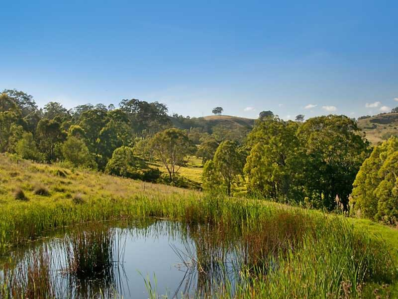 Lot 16, 376 Torryburn Road, East Gresford, NSW 2311