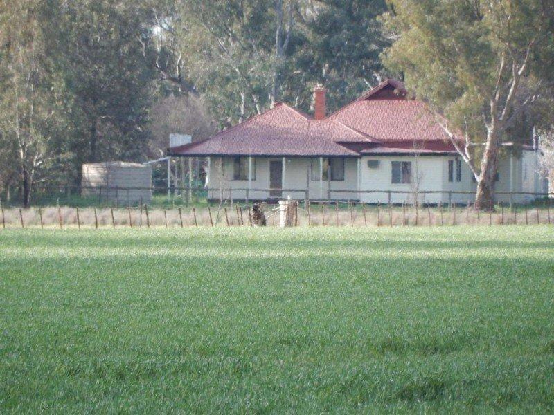 Booralee - 1189 Back Walbundrie Rand Road, Walbundrie, NSW 2642