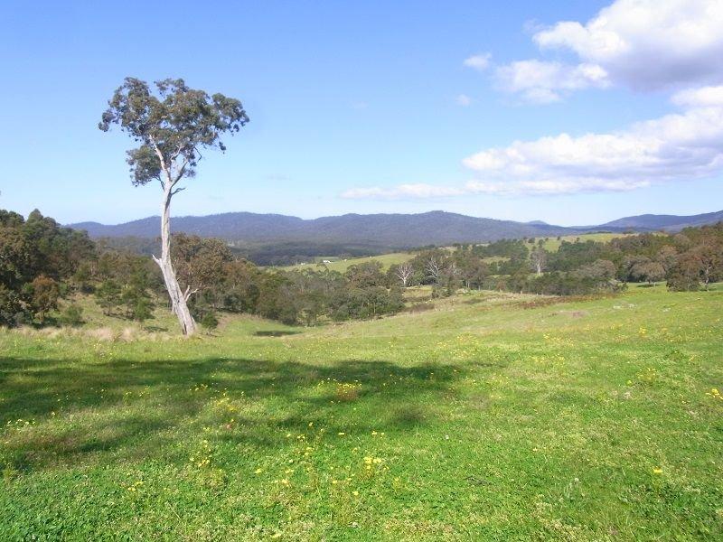 Cnr of Mt Darragh & New Buildings Road, Wyndham, NSW 2550