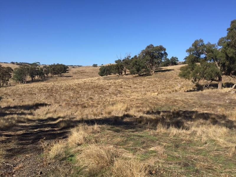 Lot 15 Goldfield Close, Tyaak, Vic 3658
