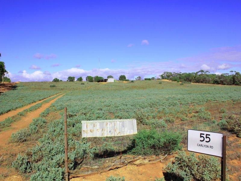 55 Carlyon Road, Monash, SA 5342
