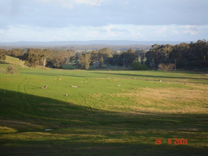 LOT 1, MUCKLEFORD GOWER LAND, Muckleford, Vic 3451