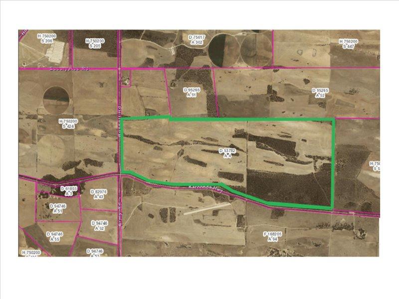 A10 Karoonda Rd, Burdett, SA 5253