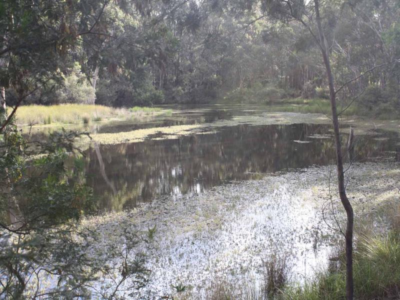 Lot 9 Silent Grove Rd, Torrington, NSW 2371