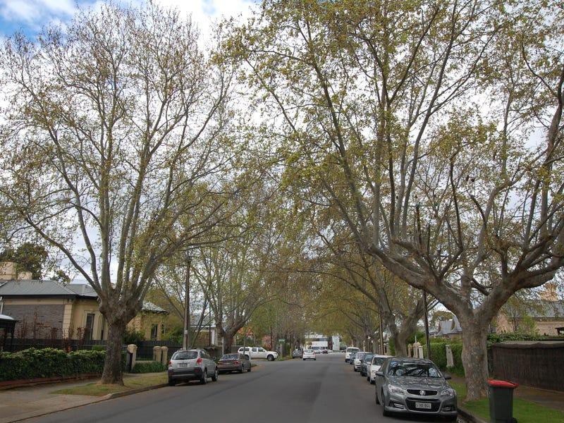 11/16-18 Harrow Road, College Park, SA 5069