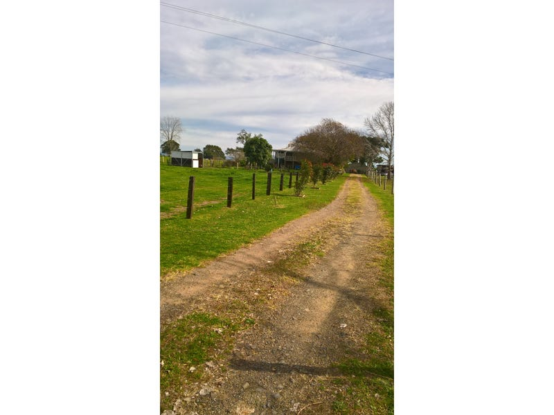 411 South West Rocks Road, Pola Creek, NSW 2440
