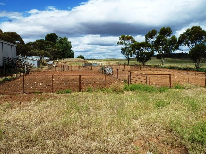 Section 29 Hundred of, Peebinga, SA 5304