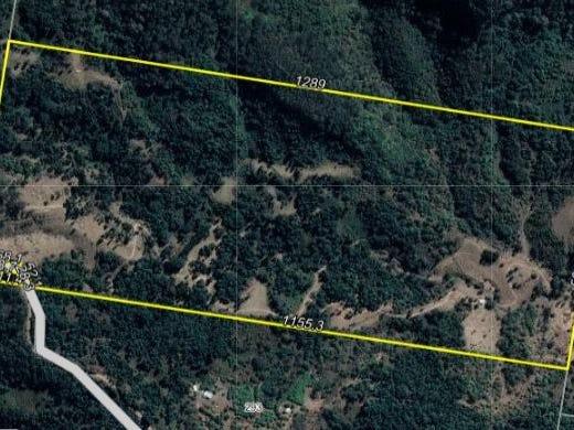 Mount Elliott Road, Undullah, Qld 4285
