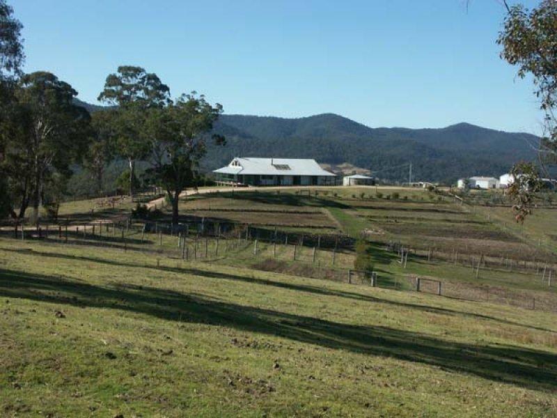 141 Yambulla Road, Towamba, NSW 2550