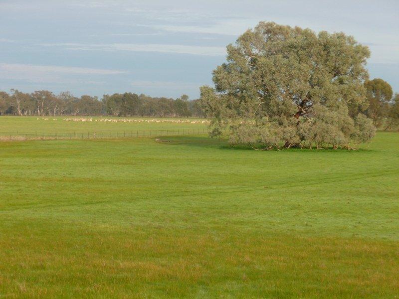 """Jacka"" Jacka Lane, Holbrook, NSW 2644"